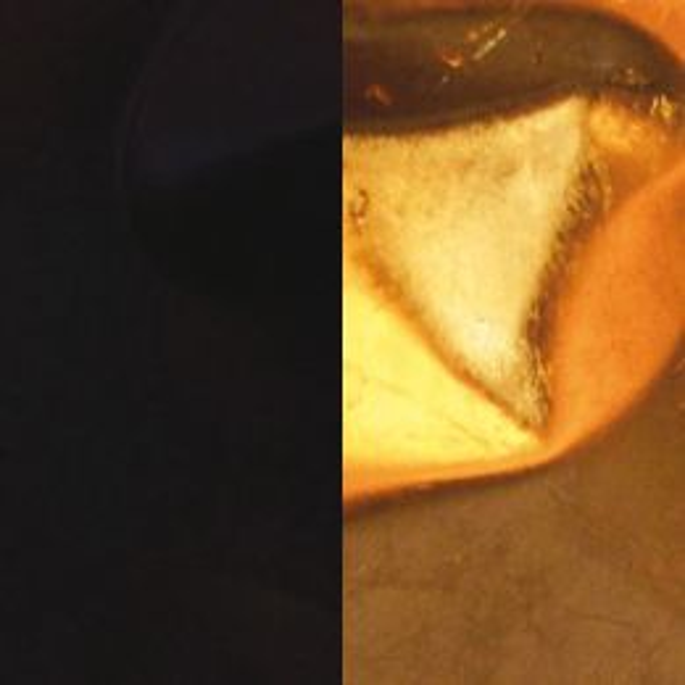 Knikerboker Crash 100x75 LED-Pendelleuchte-Schwarz matt/Blattgold; mit LED (2700K)