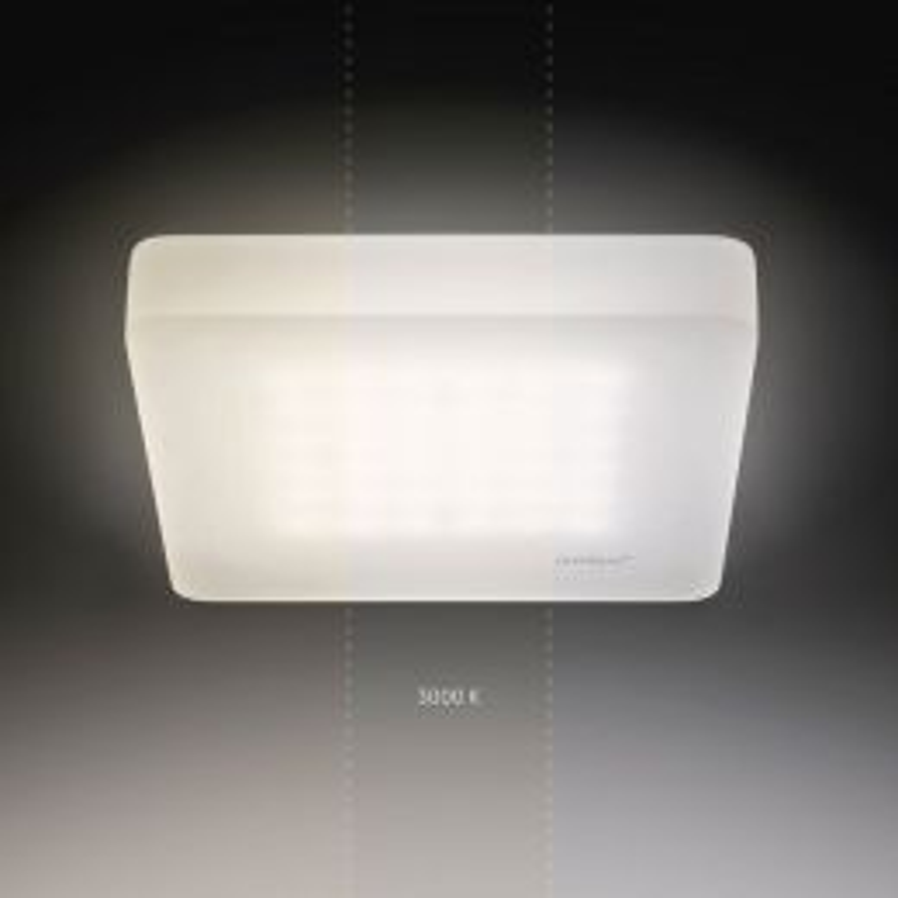 Nimbus CUBIC 49 LED-Deckenleuchte 3000K