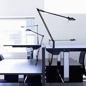 Luceplan Berenice Leuchten in vielen Größen und Varianten